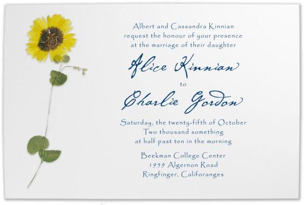 Informal Wedding Invitations as amazing invitations example